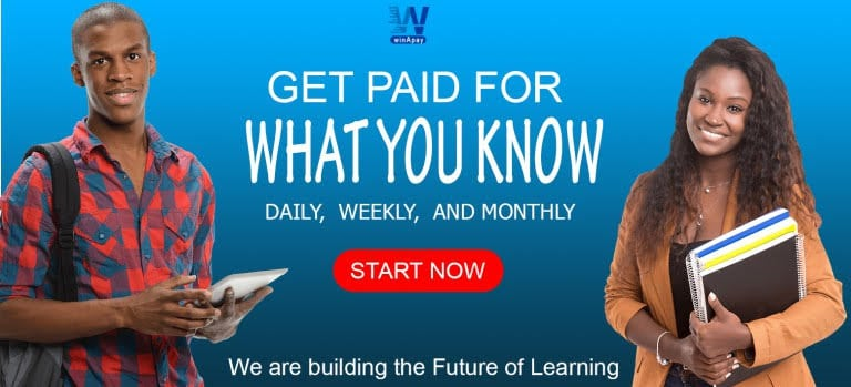 How to make money on WinApay and how it works