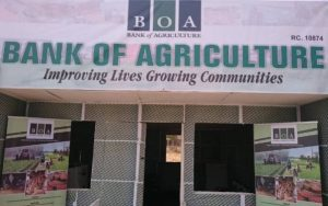 How to get a loan from the Bank of Agriculture (BOA)