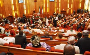 The Salary of Nigerian Senators: All you need to know