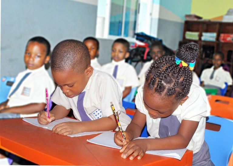 primary school business